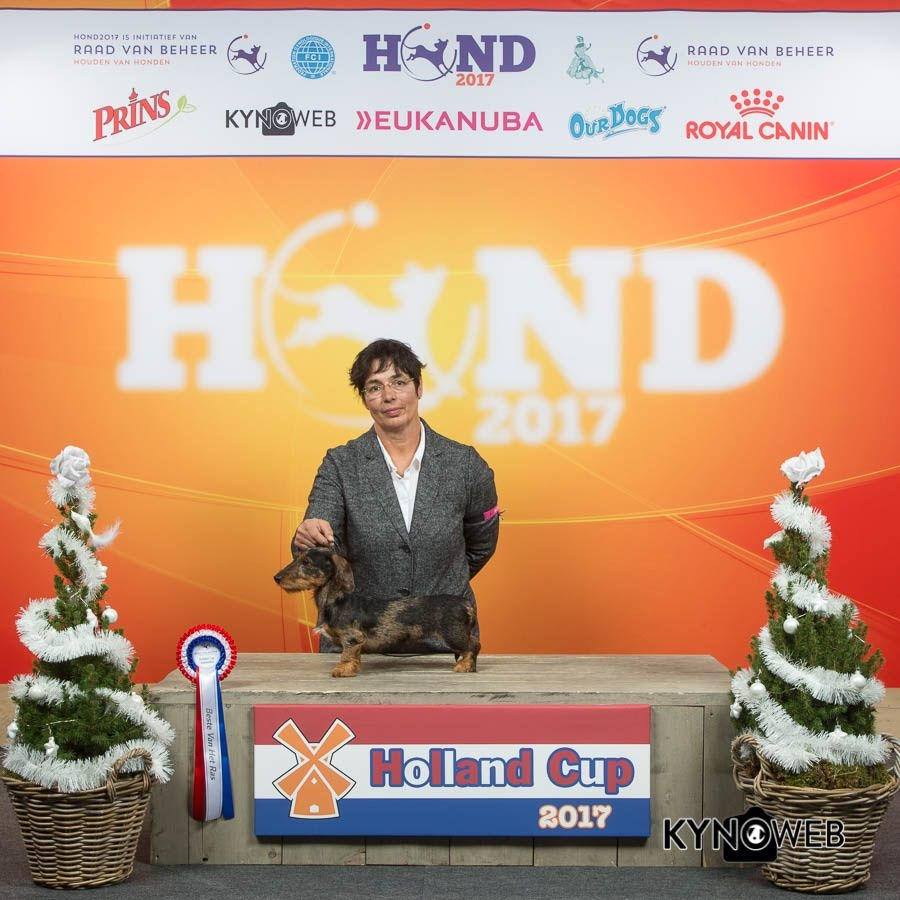 IDS Hollandcup Amsterdam 8-12-17